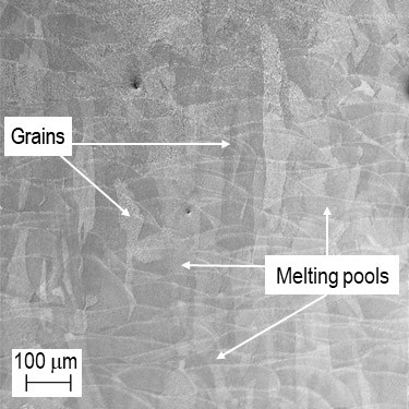 SEM-SE: Microstructure of the sample