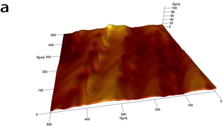 Mappa tridimensionali della scansione di tipo meander