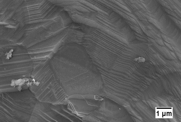 Immagine SEM a elettroni secondari che mostra la morfologia superficiale del campione stampato via SLM realizzato usando la strategia di scansione meander